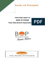 Internship Report on BANK of PUNJAB