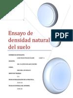 Ensayo de Densidad Natural Del Suelo
