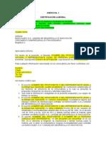 anexo_1_-_certifcacion_laboral
