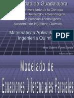 Modelado de Ecuaciones Diferenciales Paciales