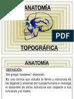 ANATOMIA TOPOGRAFICA.ppt