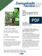 Mimosa Caesalpiniaefolia - Comunicado_Tecnico_104
