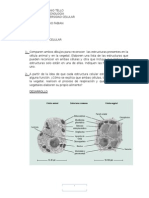 Biotecnologia n1-
