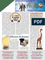 Boletín Nueva Era 5. Julio 2011.pdf
