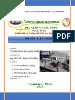 pulsos-electricos final.doc