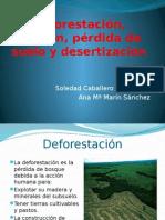 Deforestación, erosión, pérdida de suelo y desertización Ana María y Soledad