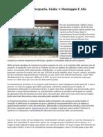 Filtro Esterno Per Acquario, Guida 's Montaggio E Alla Manutenzione