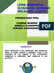 Problema Ambiental, Epistemología Del Dominio y Dinamicas Del Sujeto