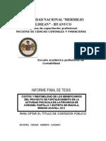 TESIS -RUIZ Limpio Para Imprimir