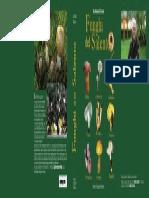 copertina funghi del salento