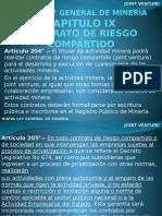 1 Nueva Ley General de Mineria Art. 204-205