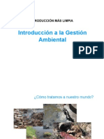 P3 Aspectos Ambientales Principios Estrategias de Pml (1)