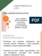 Mecanismos Estomáticos Fisiologia Vegetal