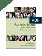 Tipos de Papas en Chiloe