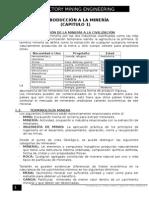 Introduccion a La Mineria Resumen
