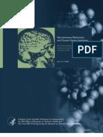 Neuroimmune Mechanisms and CFS (2003)