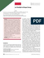 De Schamphelaire 2009 Revival of the Biological Sunlight to Biomass Energy Conversion System