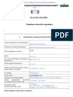 Model Plan Afaceri (1)