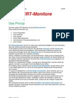 CRT Monitore - Horst Petschenig