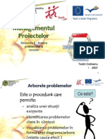 arborele_problemei.pdf