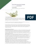 Benefícios de saúde do Óleo Essencial de Tomilho  0.docx