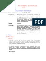 TFM_2015-2_Matematica_2