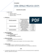 Desproporcion Cefalo-pelvica