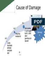 Multiple Cause of Damage