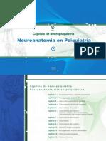 Neuroanatomia En Psiquiatria.pdf