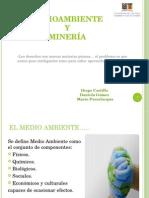 Medioambiente y Mineria Presentación Final