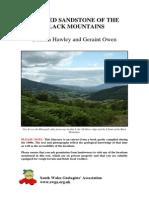 BlackMountains.pdf