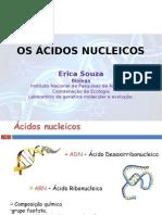 Os Ácidos Nucleicos