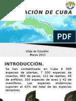 Vegetación de Cuba