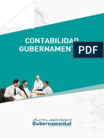 Ae - Contabilidad Gubernamental
