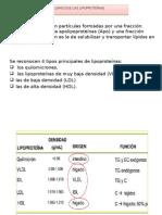 Metabolismo d{e Las Lipoproteínas