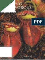 Growing Carnivorous Plants