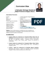 Curriculum Vitae Lisandro Schopp - Operador Multiple en Equipos Mineros..doc