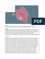 Crean marcapasos biológico mediante reprogramación somática en cerdos