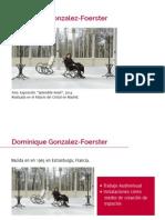 Dominique Gonzalez-Foerster por Francisca Castillo