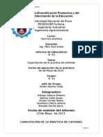 Capacitación-de-la-práctica-de-cationes. (1).docx