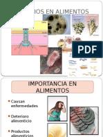 Caracterisiticas de Microorganismos en Alimentos