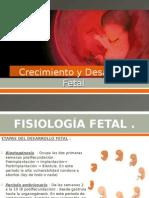 Crecimiento y Desarrollo Fetal V