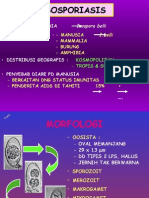 Isospora belli,.ppt