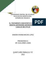 EL TRATAMIENTO ENDODÓNTICO DE LOS DIENTES ANTERIORES INFERIORES.doc
