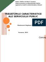 Trasaturile serviciilor publice