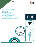 Beyond the Bonus - Driving Employee Performance