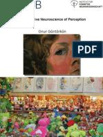 Cognitive Neuroscience of Perception_1_preliminary (1)