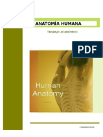 TA-1-2002-20105 Biologia y Anatomia Humana - Presentado Por Laura Apólito 2013 116742