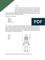 patofisiologi nyeri pada osteoartritis