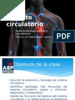 Clase 3 Aparato Circulatorio